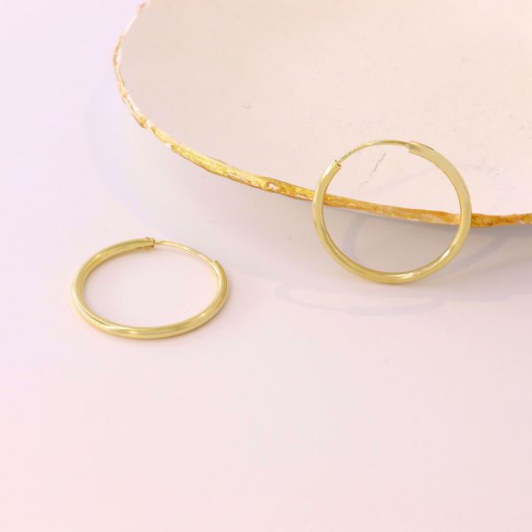 Imagem de Simple Golden Hoops